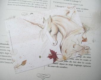 Card mailing wood-palomino Unicorn horse