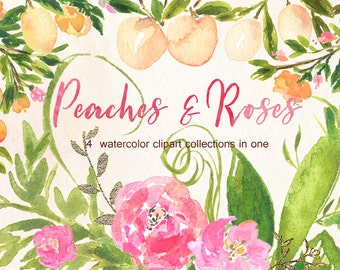 Peaches, roses, wisteria, peony and gold. Big  watercolor clip art collection. Logo, crest, wedding invitations.