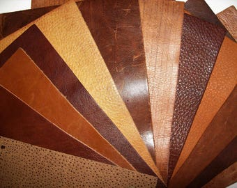 unique leathers 12pk 6x8 samples