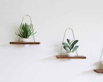 Modern Hanging Wall Planter Zebrawood