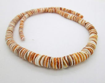 "Spiny Oyster Shell Graduated Heishi Beads, Shell Heishi Bead, Orange Shell Bead, 5-10mm (one 17 1/2"" strand)"