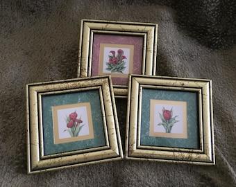 Heartfelt Collection by Kathy Seek Artist, Framed Floral Prints, Gold Wood Frames,  Floral Prints, Tulip Print, Calla Print, Iris II Print