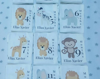 Month By Month Animal design onesies, Animal themed onesies, Animal onesies, Month to month onesies