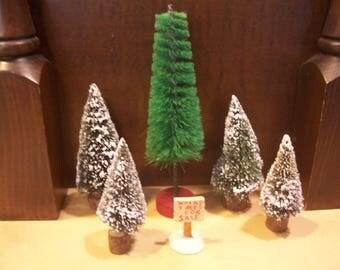 Five Bottle Brush Christmas Trees