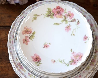 Vintage Porcelain Plate Set - 9 Pieces - Limoges Haviland and Rosenthal & Co Bavaria - Shabby Chic Table - Free Shipping Within the USA