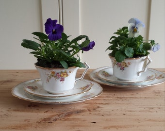 SALE   Vintage Bone China Trio