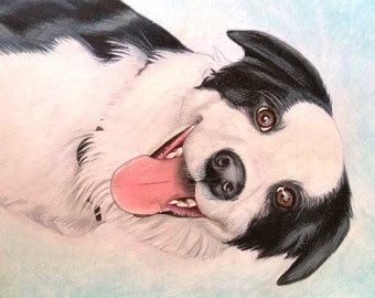 Pet portraits made to order: Dogs, cats, chooks!
