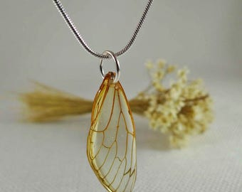 Cicada Wing Amulet, Insect Jewelry Women, Resin Wing Amulets, Wing Resin Amulets, Specimen Necklace, Preserved in Resin, Real Insect Jewelry