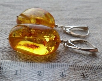 Genuine Baltic Amber Big Honey Glittering Earrings 925 Sterling Silver