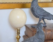 Natural ostrich egg on a brass display stand