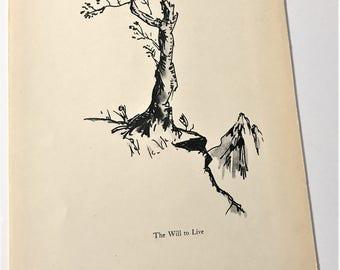 Original Vintage 1930s pen and ink sketch barren tree titled The will to Live, nature botanical black and white art print plant no leaves