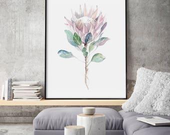 Protea Painting, Minimalist King Protea Print, Giclee of Original Illustration, Plant Drawing, Minimalist Flower Wall Art, Floral Wall Decor
