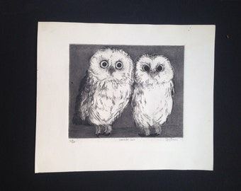 Two Saw Whet Owls