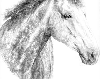 Disegno a matita cavallo etsy for Cavallo disegno a matita
