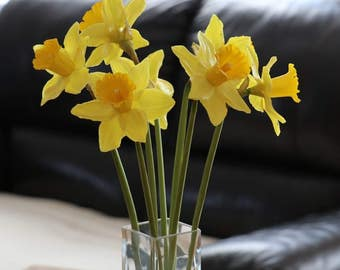 Flower decoration, home decoration, home decor, gift, daffodils, Strauß