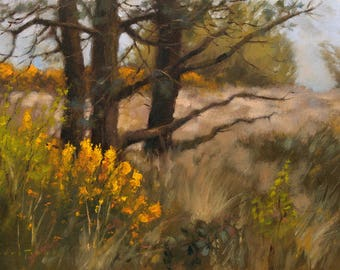 Gorse in Bloom, Dartmoor, landscape oil painting, direct from artist