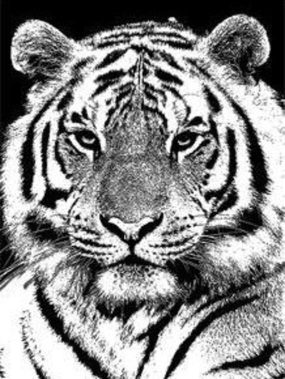 white tiger face printable art black and white Digital Image Download tigers jungle safari animal art graphics printables