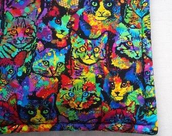 Catnip Filled Cushion - Colorful Cat Mat