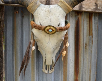 Bull Steer Cow Skull,  Skull Horns, Turquoise  Headpiece, Wall Mount, Home Decor, Ranch Decor, Country Western, Southwestern Wall Hanging,