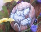 Baby Bunny, painted rocks by Shelli, ooak original designs.