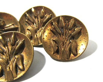 Victorian Cattail Buttons ANTIQUE Buttons Five (5) Cattail Brass Picture Buttons Victorian Edwardian Steampunk Jewelry Sewing Supplies (R84)