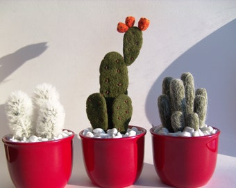 Needle Felted Cactus - Cactus - Potted Plant