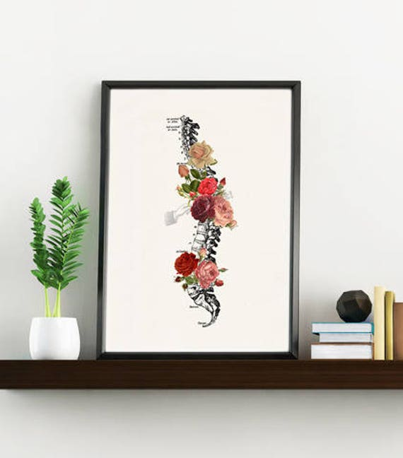 Springtime Roses Spine. Doctors gift Print- A4 Wall art Human anatomy print- Chic Science prints wall art flowers art, Trunk print SKA229WA4