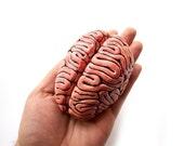 Ceramic Brain Sculpture, Desk accessory,  Anatomy sculpture, Business card holder, Note holder,  Psychology gift