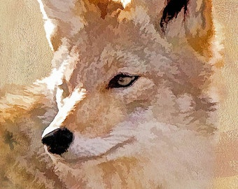 wildlife print, coyote print, animal print, wildlife photography, wildlife picture, animal art, wildlife painting, digital art, home décor