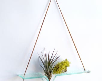 Large - Clear Glass Airplant Swing with Leather Cord for Hanging - plant wall hanging