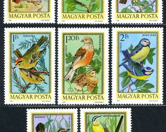 Gorgeous Bird Postage Stamps from 1973 Hungary - Wren, Thrush, Robin -  Use in Craft Projects, Collage, Scrapbooking, Children's Art