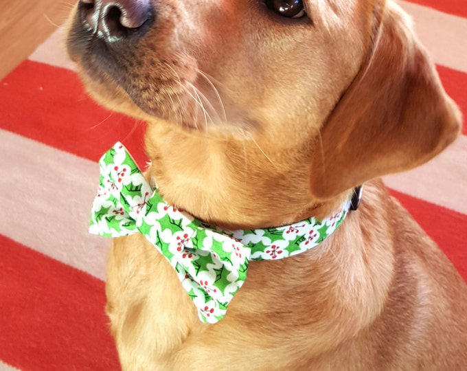 Dog Bowtie - Christmas Holly