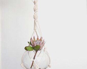 Natural macrame plant hanger, dyed plant hanger, pot plant holder, plant hanging basket, rope pot planter, indoor planter, terrarium holder