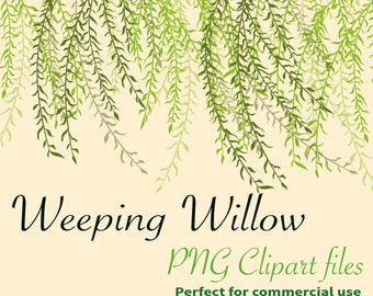 28 x PNG Coloured Gorgeous Weeping Willow Leaves Branches garden wedding party Clipart Instant Downloadable 300dpi large PNG background