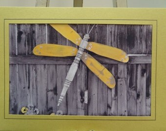 Backyard Art, Dragonfly Blank Photo Card with Envelope