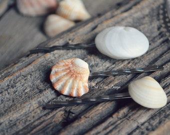 Seashell Bobby Pin Set Of 3