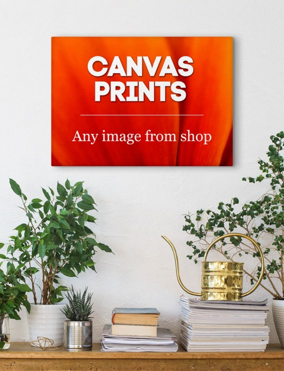 Canvas Wall Decor, Photo Wall Art, Canvas Prints, Wall Decoration, Any Image From Shop, Stretched Canvas, Canvas Wraps