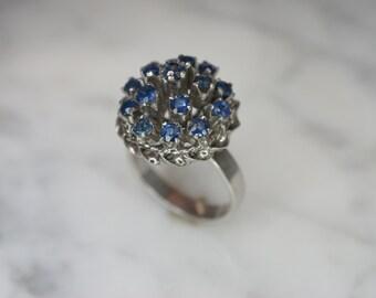 14k White Gold and Blue Sapphire Thai Princess Ring