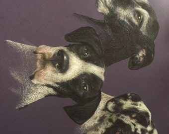 Three Pet Portrait - Colored Pencil