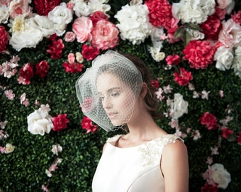 LOUISE Double LAYER Birdcage VEIL - birdcage veil double layer, blusher veil, tulle & russian netting veil, bridal double birdcage veil