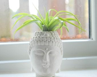 Buddha Head Planter, Air Plant Holder, Handmade Buddha Plant Holder, Air Plant Terrarium Kit, Gifts under 15, Buddha Lovers