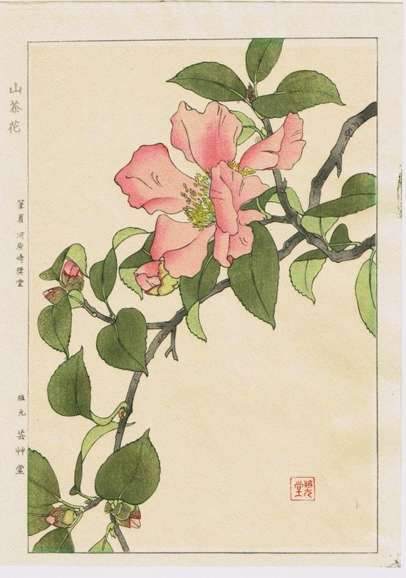 "Japanese original woodblock print, Kawarazaki Kodo, ""Camellia sasanqua"""