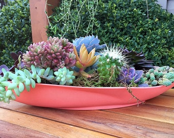 Succulent planter/planter/succulent arrangement/succulent plant/outdoor planter/indoor planter /cactus planter