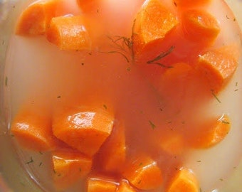 "Lacto Fermented Carrot ""Pickle"" Brine-Juice"