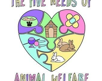 The Five Needs of Animal Welfare