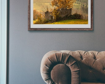 The tree in the house print fine art photography