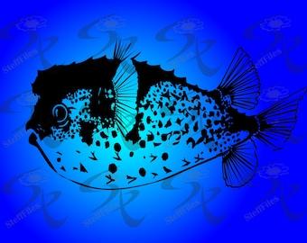 0144_Fish hedgehog,SVG,DXF,AI, png, eps, jpg,Vector_Clip Art,Download files, Digital, graphical