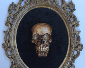 Big frame with Skull