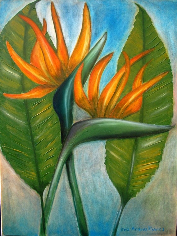 Strelitzia 2. Painting, painting oil, canvas oil, painting canvas, original art, painting original,  handmade   painting, ready to ship