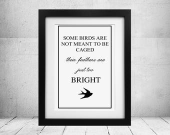 "Stephen King - The Shawshank Redemption ""some birds"" quote print Poster"
